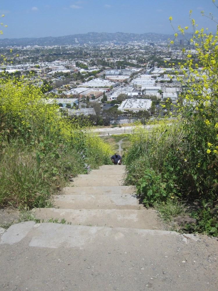 Baldwin Hills Scenic Overlook - Culver City