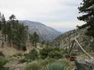 Mt. Baldy 003