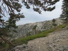 Mt. Baldy 009