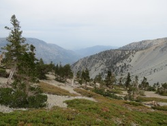 Mt. Baldy 015