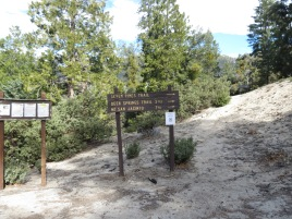 Seven Pines Trail 001