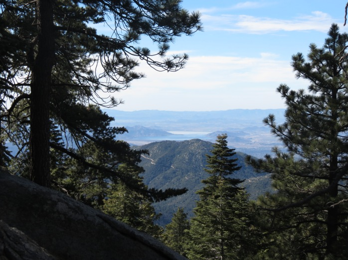 Seven Pines Trail 005