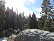 Seven Pines Trail 008