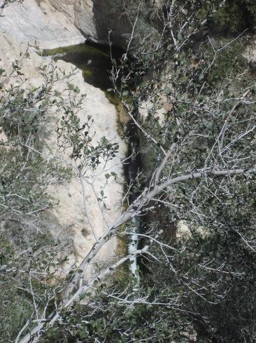 Switzer Falls 005