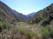 Trail Canyon 003