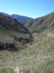 Trail Canyon 004