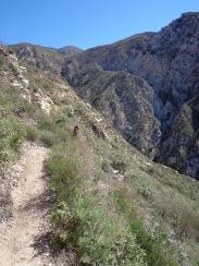 Trail Canyon 005