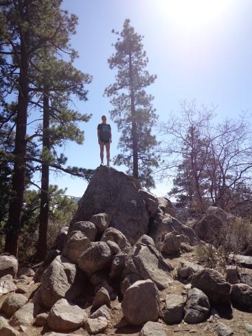 Woodland Trail 003