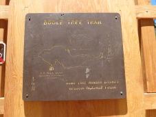 Boole Tree 002