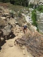 East Fork Trail 005
