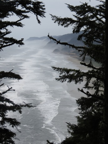 Heceta Head Trail 009