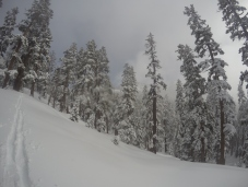 Pear Lake Ski Hut 28