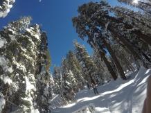 Pear Lake Ski Hut 24