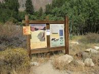 Pine Creek Pass 52