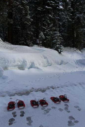 Pear Lake Ski Hut 03