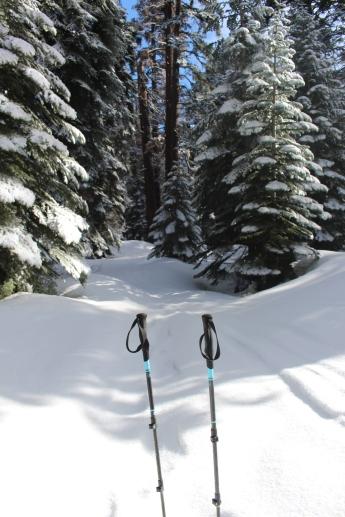 Pear Lake Ski Hut 04