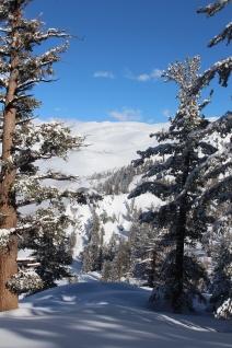 Pear Lake Ski Hut 07