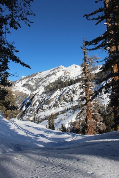 Pear Lake Ski Hut 20